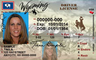 /files/live/sites/wydot/files/shared/Driver_Services/driver-license-adult.jpg